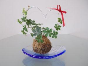 ハートのワイヤーフレームの苔玉を作ろう♪ (インストラクター3期 晝間綾子さんの作品)