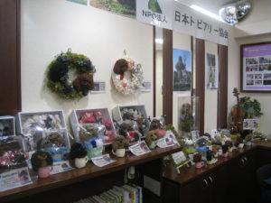 住まいるcafe綱島も情報館として参加。そこにモストピアリーを展示させていただきました。