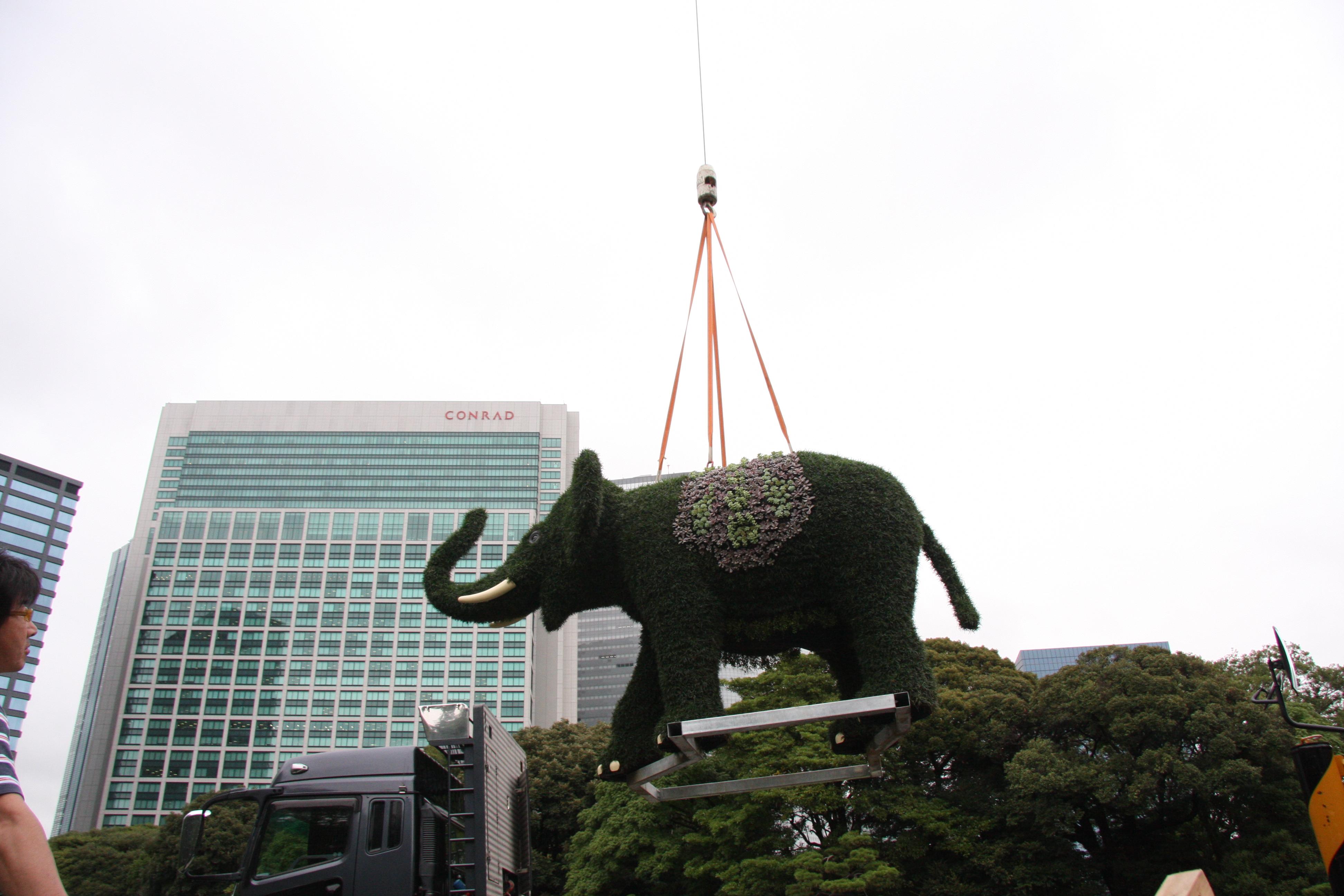 空飛ぶ象さん
