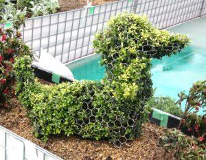 トピアリーフレームダックス植栽例