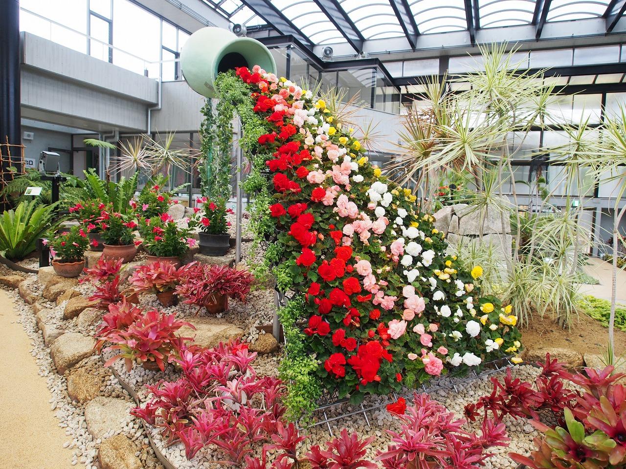 大温室が植物造形(トピアリー)でいっぱいに!